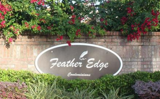 Feather Edge