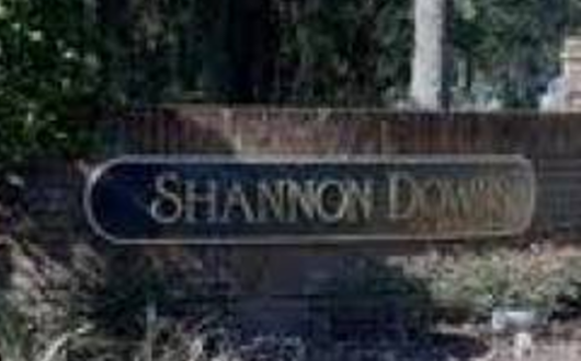 Shannon Downs