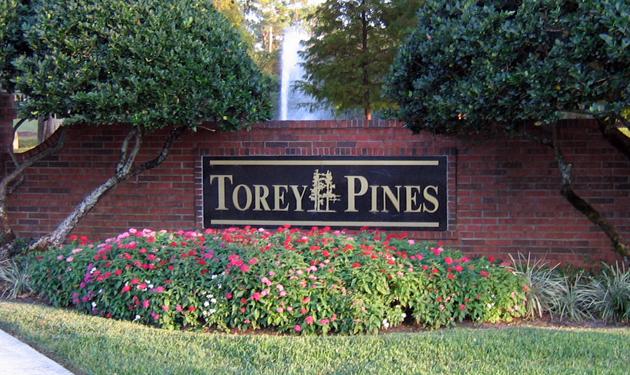 Torey Pines